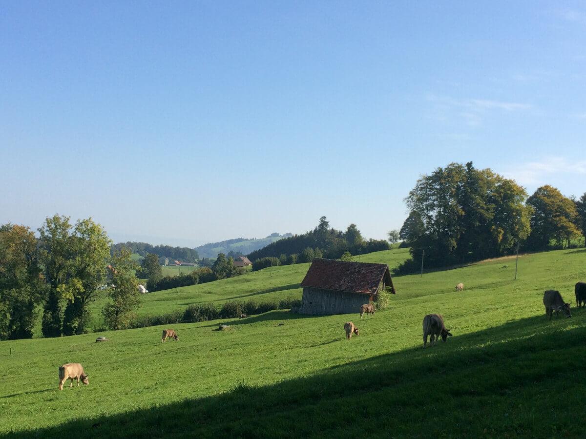 St Gallen Landschaft